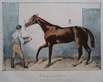 Thormanby (horse) - Thormanby. Lithograph by John Sherer