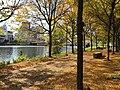 Through Riverfront Trail in fall foliage (30346899375).jpg