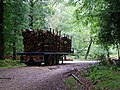 Timber trailer, Islands Thorns Inclosure, New Forest - geograph.org.uk - 478247.jpg