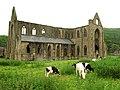 Tintern Abbey from distance.JPG