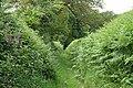 Tiverton, track to Passmorehayes - geograph.org.uk - 189404.jpg