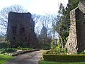 Tiverton , Tiverton Castle Ruins - geograph.org.uk - 1272097.jpg