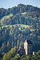 Toggenburg Burgruine Iberg.jpg