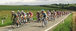 Peleton in de ronde van Wallonië 2008