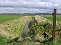 Towards Cave Common Farm - geograph.org.uk - 732311.jpg