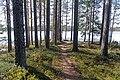 Trail to Luonetjärvi.jpg