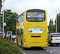 Transdev Yellow Buses 181 rear.JPG