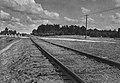 Treblinka railway siding 1945.jpg