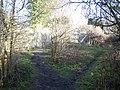 Triangular footpath junction - geograph.org.uk - 1144140.jpg