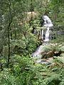 Triplet Falls at Otway National Park (494351818).jpg