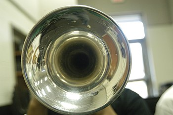 English: Trumpet bell