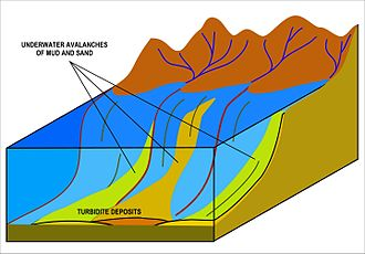 "Turbidity current - Turbidites are deposited in the deep ocean troughs below the continental shelf, or similar structures in deep lakes, by underwater turbidity currents (or ""underwater avalanches"") which slide down the steep slopes of the continental shelf edge, as illustrated in the diagram. When the material comes to rest in the ocean trough, it is the sand and other coarse material which settles first followed by mud and eventually the very fine particulate matter. It is this sequence of deposition that creates the Bouma sequences that characterize these rocks."