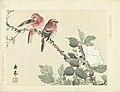 Twee rode vogels op tak met witte bloem Bloemen- en vogelschetsen van Keinen (serietitel) Keinen kacho gafu (serietitel op object), RP-P-2004-508D-7.jpg