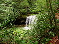 Twin-waterfalls-1 - West Virginia - ForestWander.jpg