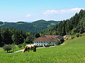 Typischer Mühlviertler Vierkant-Bauernhof bei Sankt Leonhard.jpg