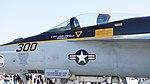 US Navy FA-18E Super Hornet (NF300 166859) of VFA-115 CAG bird canopy static display at NCAS Iwakuni Base May 5, 2016.jpg