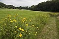 Uitzicht op Elyzeese Dal bij Beek - Unknown - 20537011 - RCE.jpg