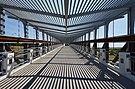 University of North Texas September 2015 40 (pedestrian bridge).jpg
