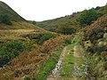 Upper Derwent Valley - geograph.org.uk - 265494.jpg