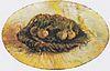 Van Gogh - Korb mit Blumenzwiebeln.jpeg