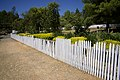 Vandalized picket fence.jpg
