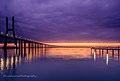 Vasco da Gama bridge at fall morning (15869146022).jpg