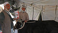 Veterinary Medical outreach in the Baraki Barak District, Afghanistan DVIDS218049.jpg