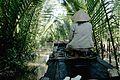 Vietnam (4001186200).jpg