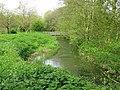 View along the River Stour near Singleton Lake - geograph.org.uk - 1270518.jpg