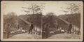 View looking south on the Trestle Bridge, at East Tarry Town, N.Y. on the New York, Boston & Montreal Railway, from Robert N. Dennis collection of stereoscopic views.png