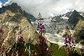 View of Monte Bianco in summer (Nuria Gómez Delgado).jpg