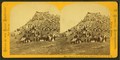 View of Pine Bluff and Editorial Party, U.P.R.R, from Robert N. Dennis collection of stereoscopic views.png