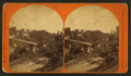 View of a bridge over a river with houses in the background, by Liebich's Photographic Landscapes.png