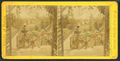View of an unidnetified garden with rustic fences and planters, by Seaver, C. (Charles).png