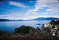 Views of Glacier Bay National Park and Preserve, Alaska (6f5d00cf-64dd-4e58-9f05-2be624e7af0a).jpg