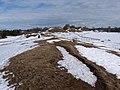 Viking Burial Mounds in Gamla Uppsala 126991017.jpg