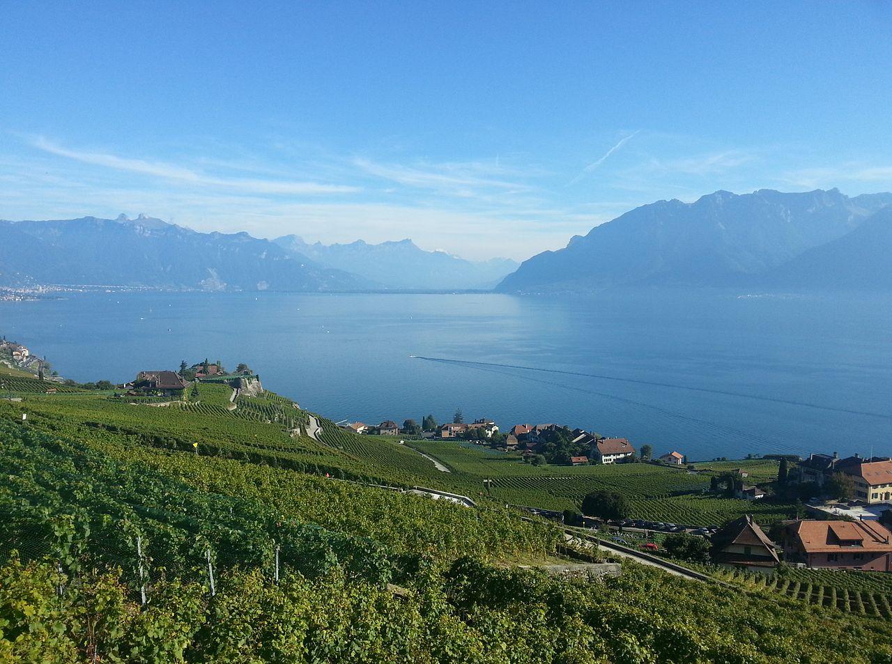 Kanton Vaud dan teras-teras anggurnya (Danau Jenewa)