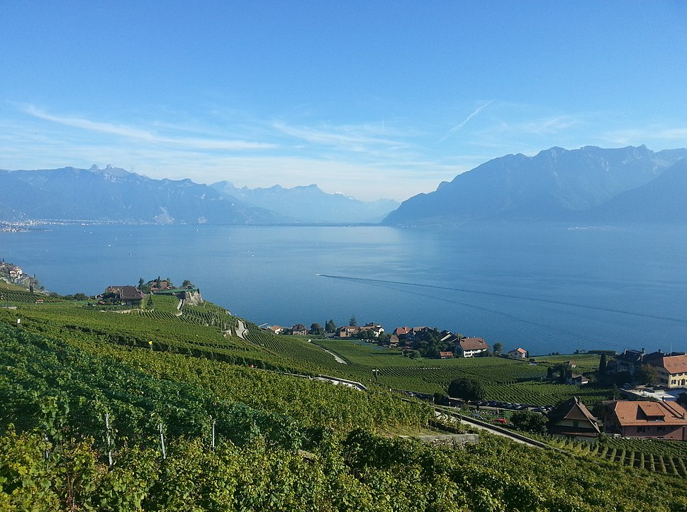 Vine Terraces of Lavaux and the Leman lake in Switzerland