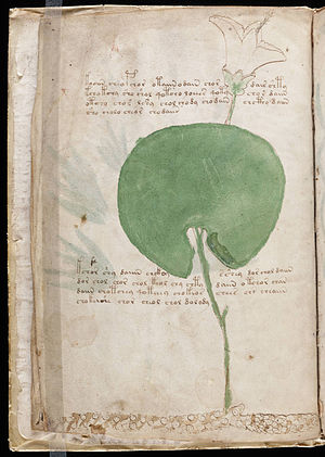 A page from the mysterious Voynich manuscript,...