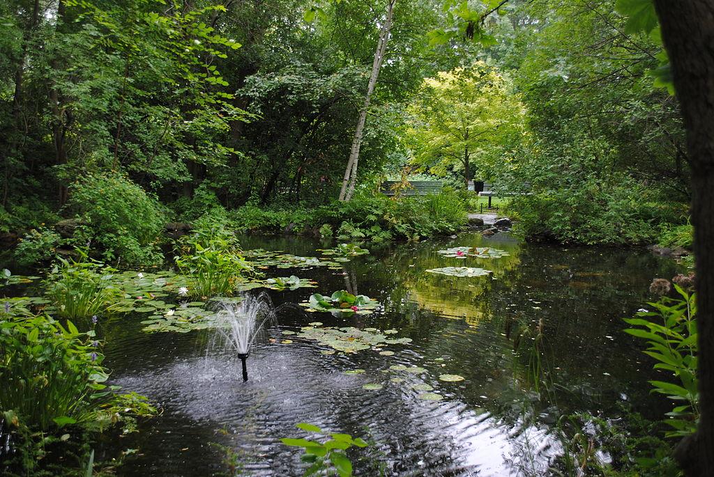 the Bois-de-Liesse Park near the Prairie River, Montreal