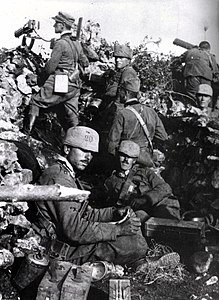 WWI - Second Battle of the Isonzo - 20th Cavalleggeri di Roma Cavalry Regiment position in the Carso.jpg