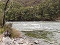 Waiau River shallows.jpg