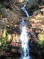 Wandern im November in Todtmoos - panoramio (14).jpg