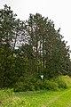 Warburg - 2018-04-27 - HX-004 Iberg bei Welda (15).jpg