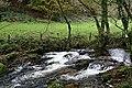 Warleggan River - geograph.org.uk - 276921.jpg