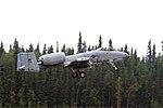 Warthog in flight (9523180937).jpg