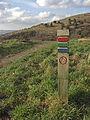Waymarker, Crompton Moor - geograph.org.uk - 1194125.jpg