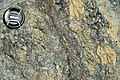 Weathered serpentinite (East Dover Ultramafic Body, Ordovician; Copperhead Road quarry, near East Dover, Vermont, USA) 7.jpg