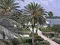 Wedding Chappel, Disney World - panoramio.jpg