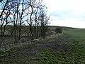 Well trodden field - geograph.org.uk - 1221702.jpg